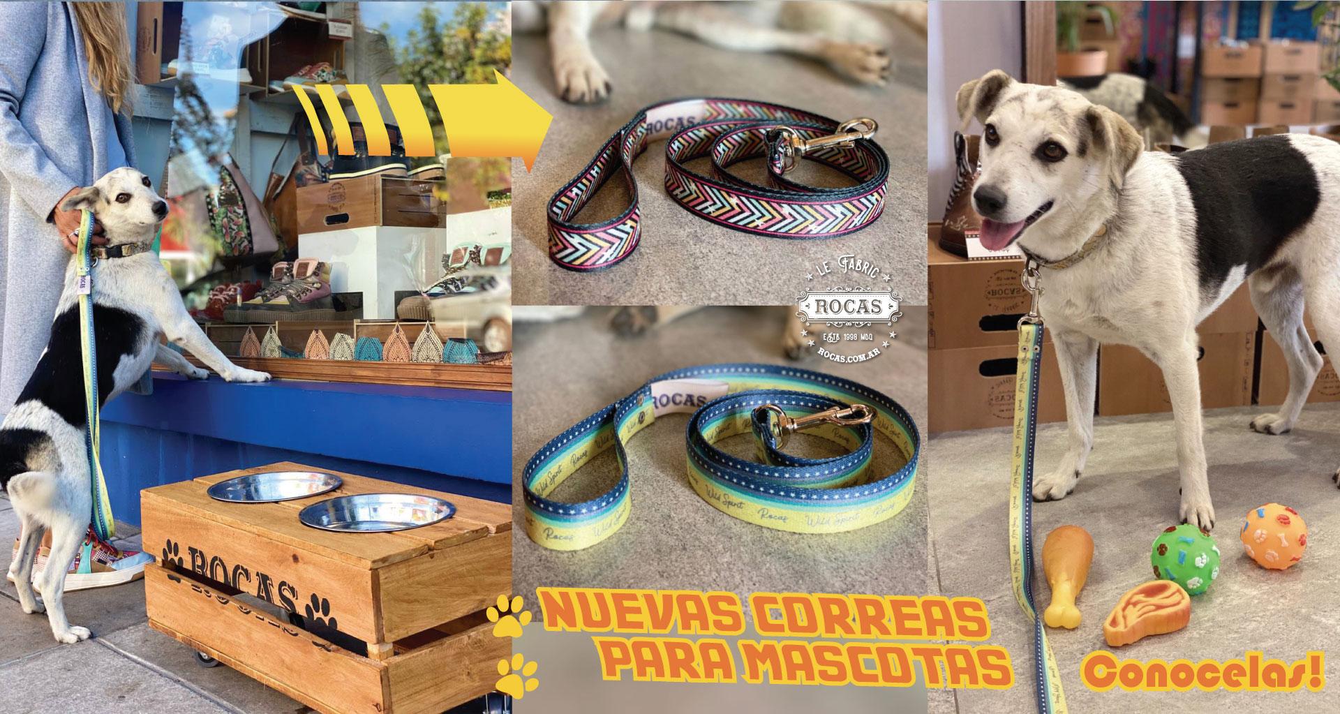 Correas para mascotas